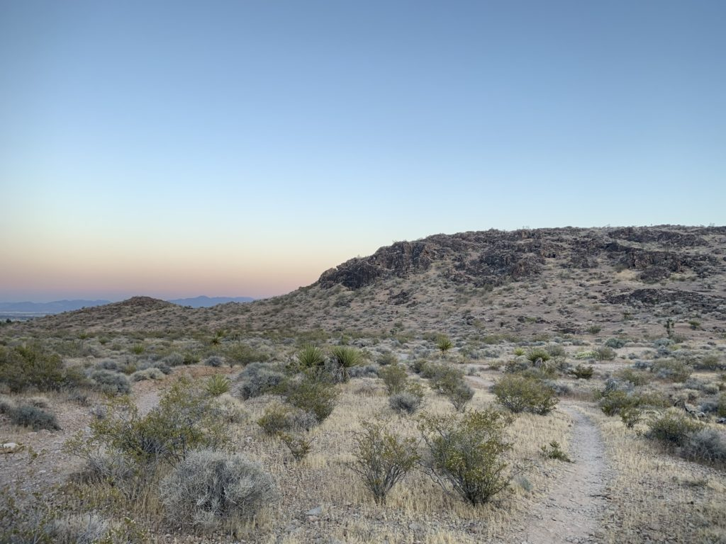 Bear's Best Trail System at Dusk